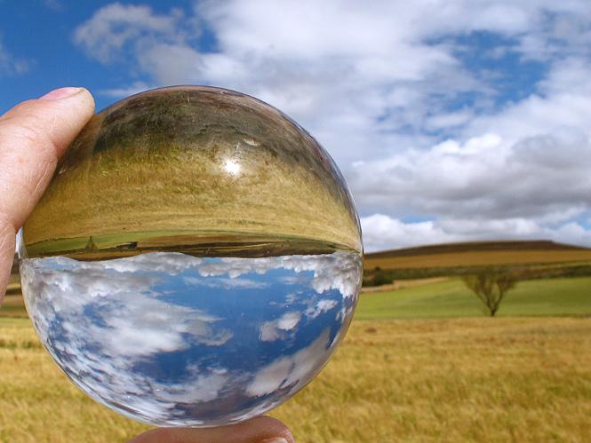 """""""Día Mundial del Medio Ambiente 2014"""" von jacinta lluch valero"""